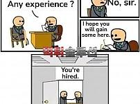 취업계의 평행우주